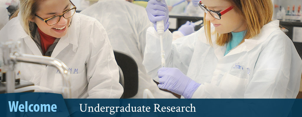 Undergraduate research